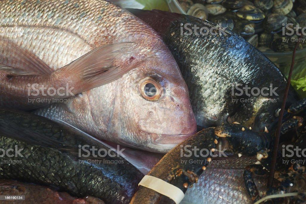fish selection royalty-free stock photo