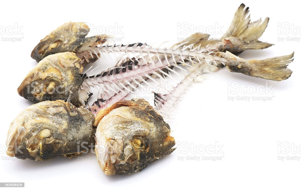 Fish skeletons pile isolated on white royalty-free stock photo