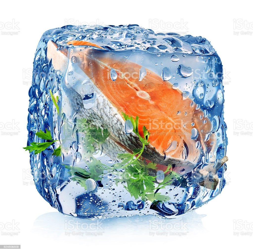 Fish steak in ice cube stock photo