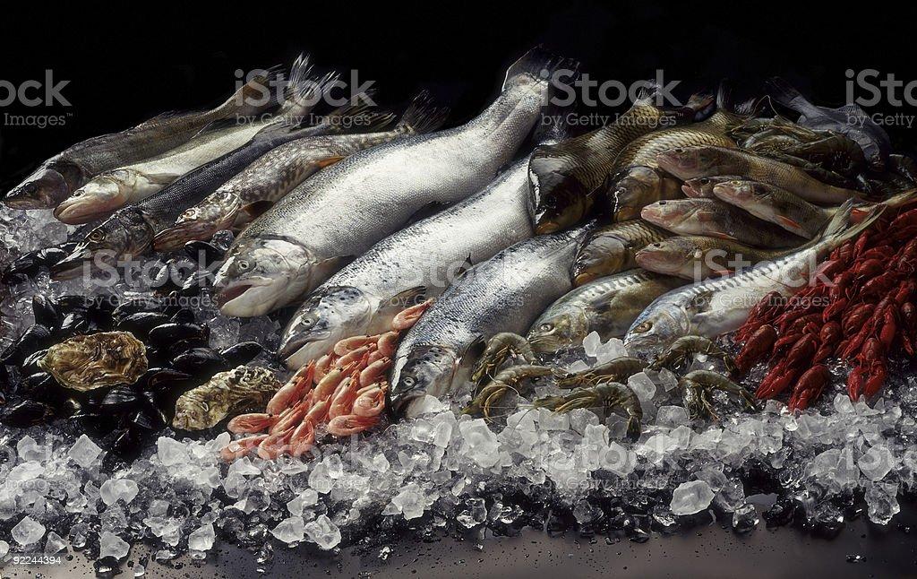 Fish still life stock photo