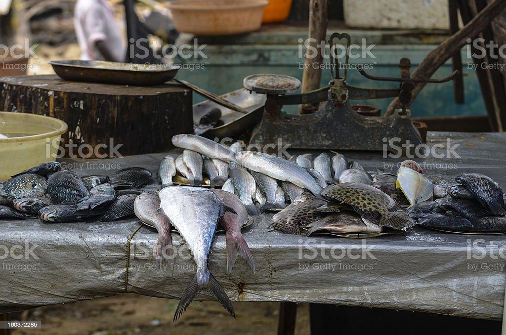 Fish Street Market royalty-free stock photo