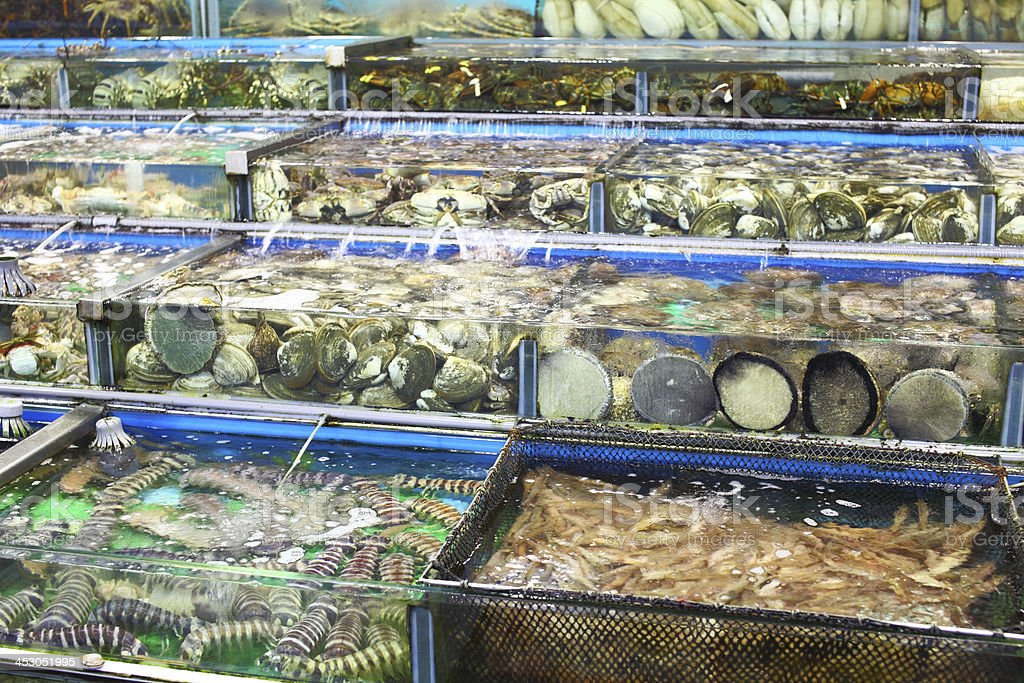 fish tank in seafood market stock photo