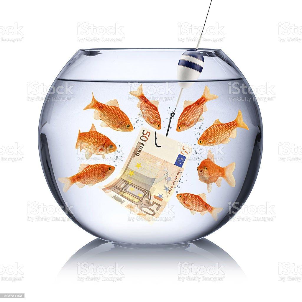 fish temptation concept stock photo