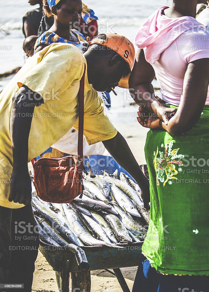 Fish trading in West Africa. royalty-free stock photo