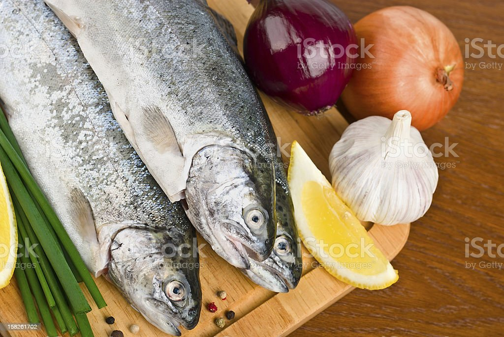 Fish - Trout Breeding royalty-free stock photo