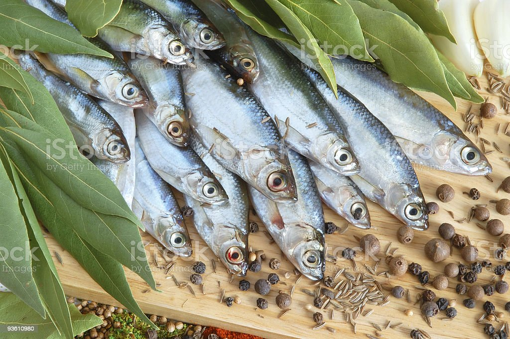Fish with fresh bay leaves royalty-free stock photo