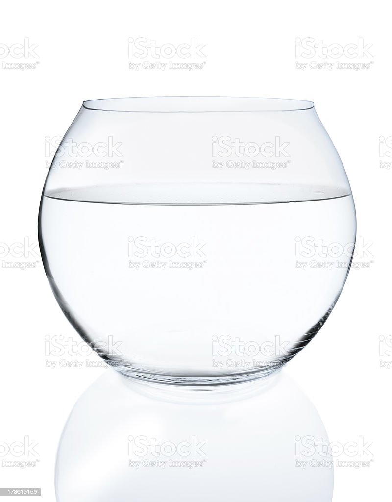 fishbowl royalty-free stock photo