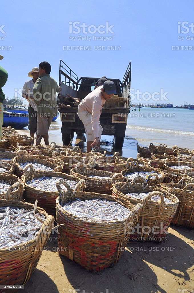 Fisheries are located on the beach in many baskets stock photo