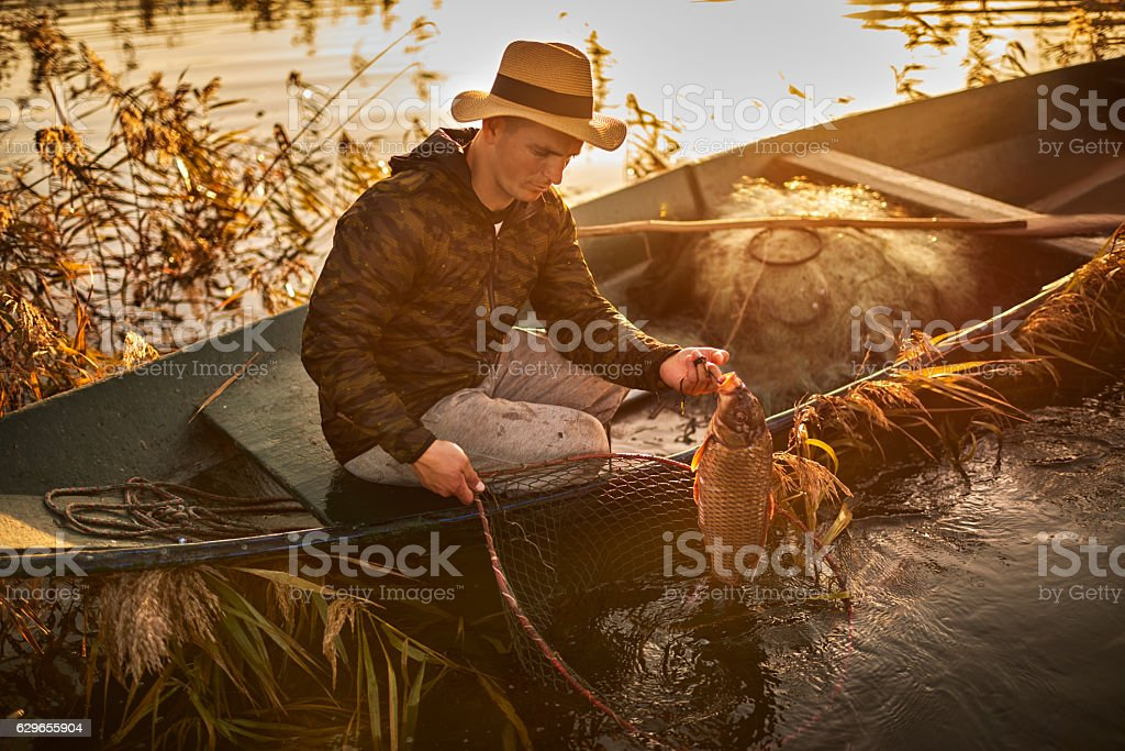 Fisherman and carp fish stock photo
