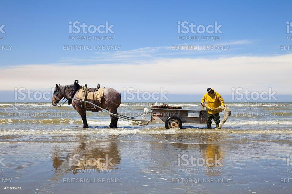 Fisherman at the Belgium North Sea stock photo