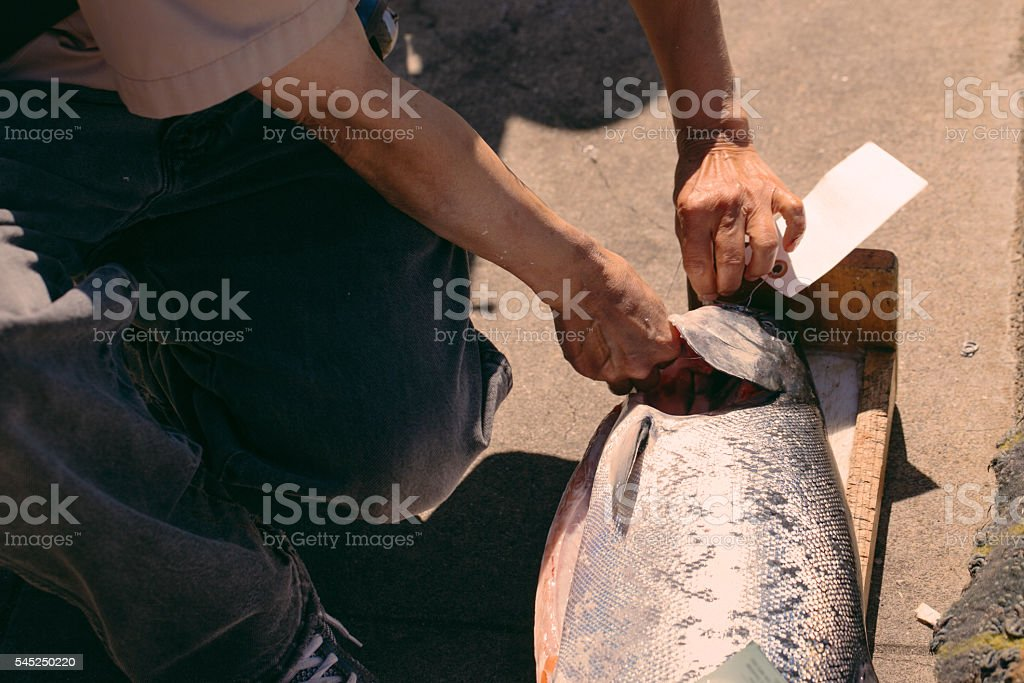 Fisherman cleaning and tagging a fish stock photo
