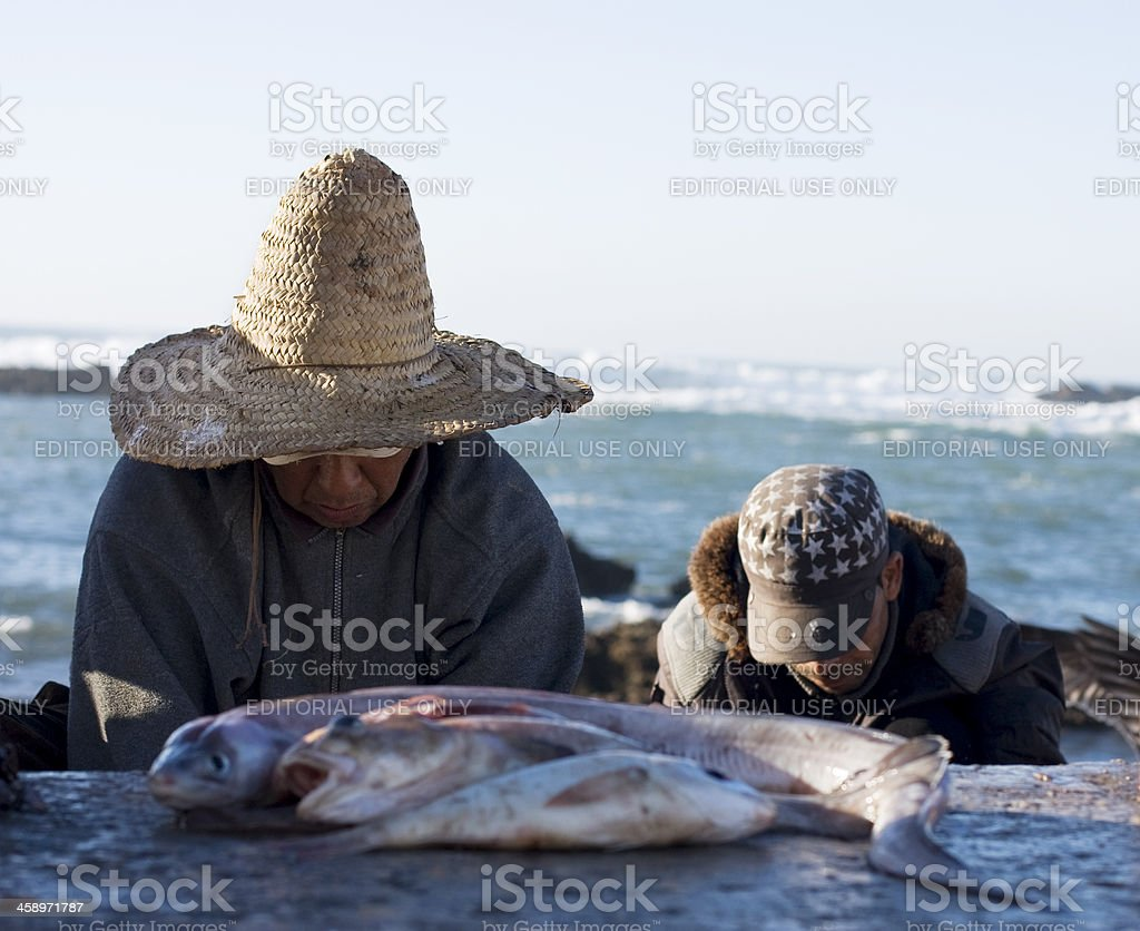 Fisherman cleaning fish, Essaouira, Morocco royalty-free stock photo