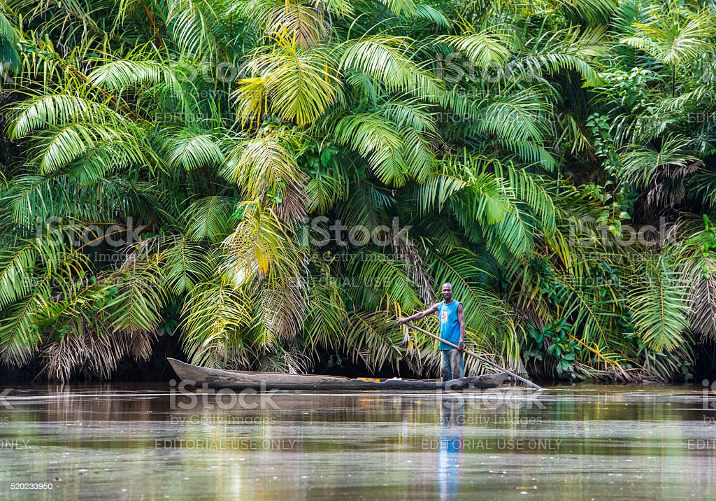 Fisherman in the Mangrove Forest on Congo River stock photo