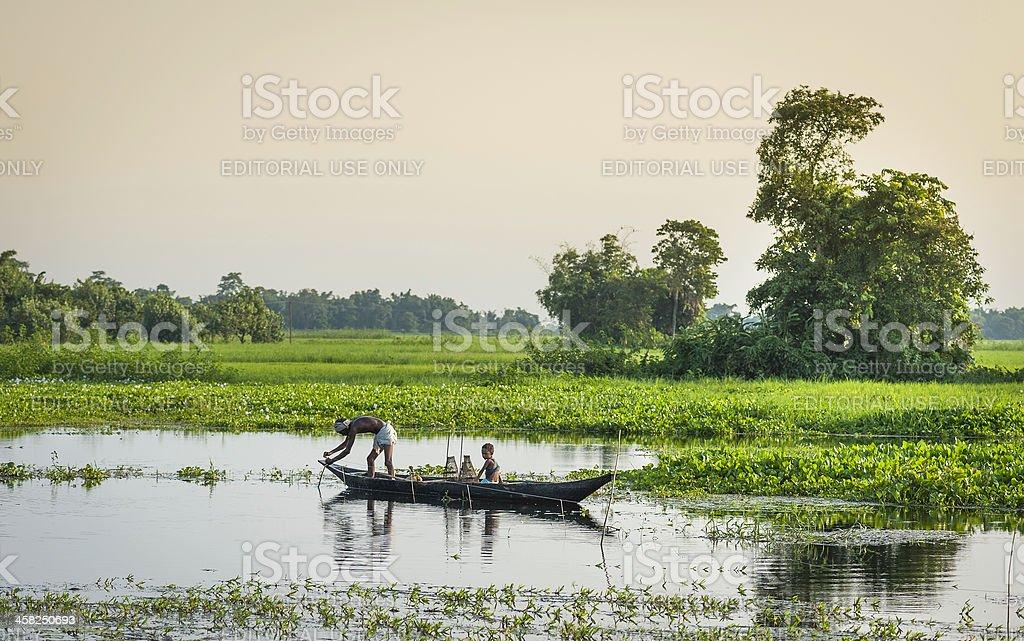 Fisherman laying prawn traps, Majuli, Assam, India. stock photo