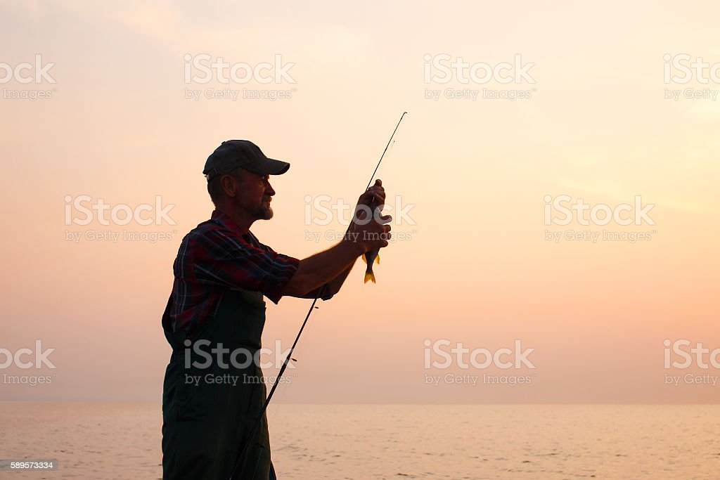 fisherman removes the fish from the hook stock photo