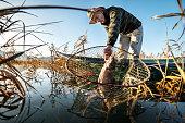 Fisherman taking out carp fish