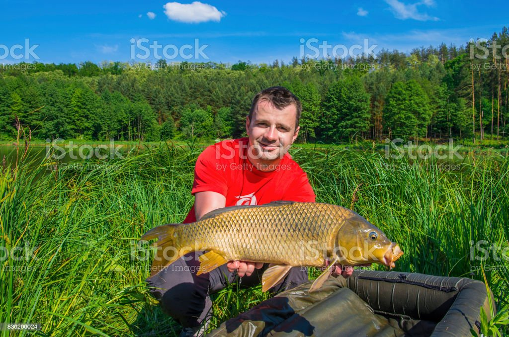 Fisherman with carp fish trophy on natural green background near the lake stock photo