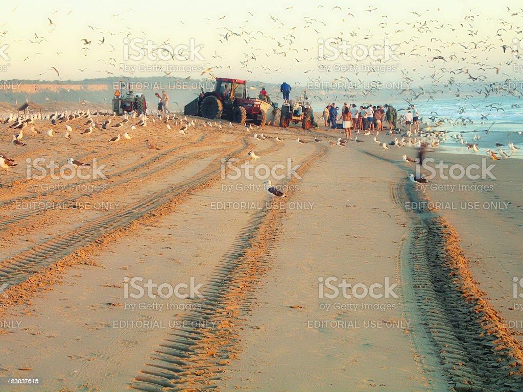 Fisherman working on beach of Costa da Caparica (Portugal) stock photo