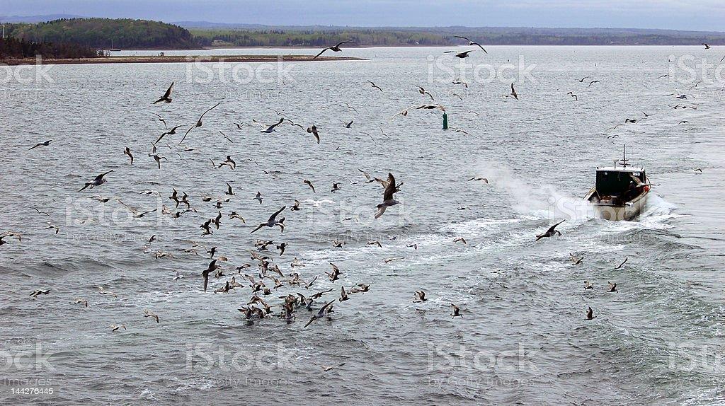 Fishermans Boat royalty-free stock photo