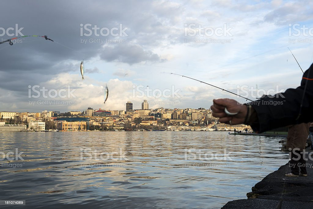 Fisherman's catch in Istanbul, turkey royalty-free stock photo