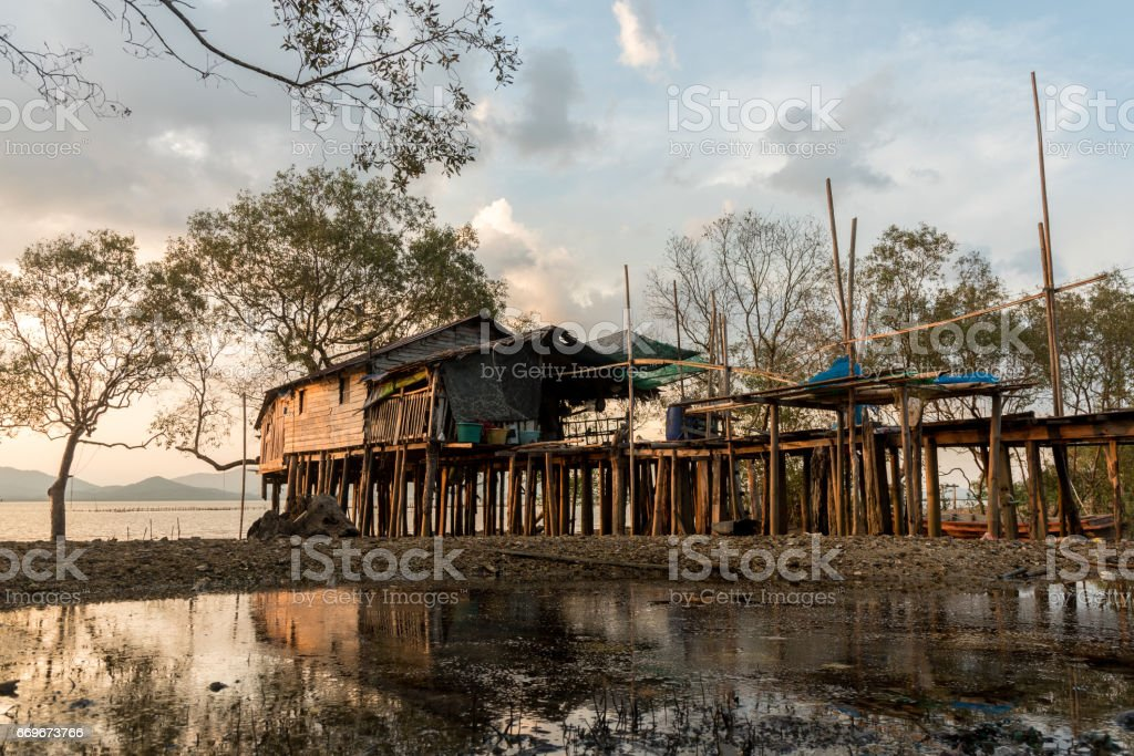 Fisherman's house at mangrove forest,Ranong Thailand stock photo