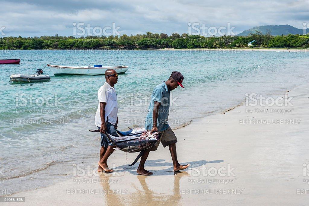 Fishermen and tuna stock photo