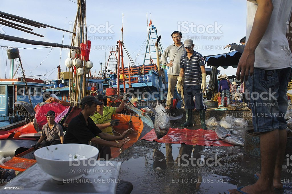 Fishermen are working on port royalty-free stock photo
