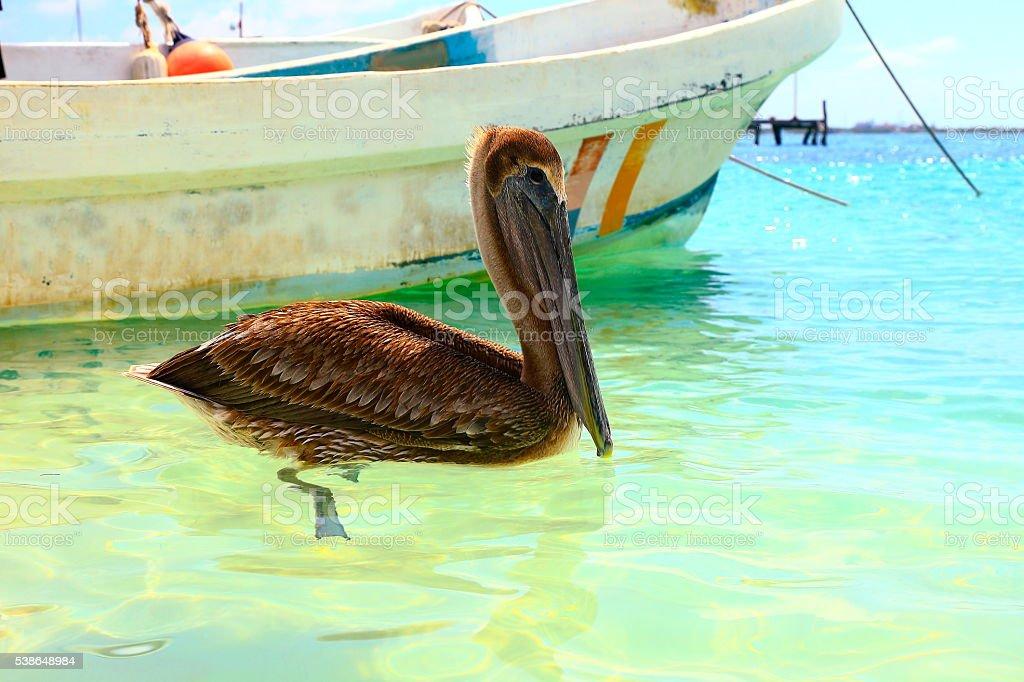 Fishermen boat, pelican sea bird - Cancun, caribbean tropical paradise stock photo