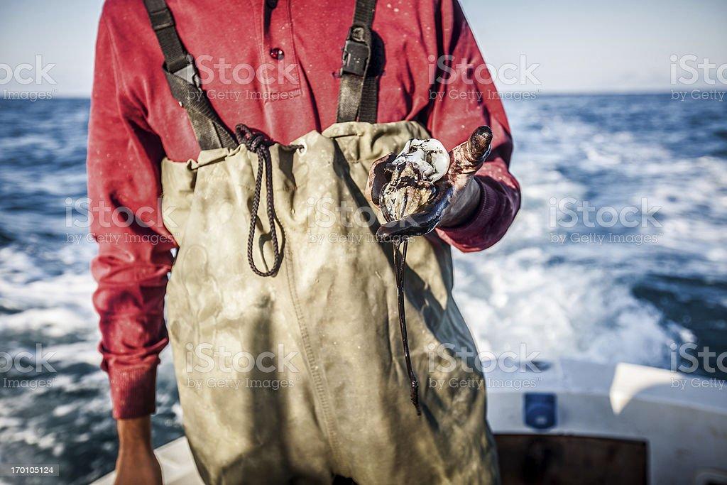 Fishermen hands black for squids stock photo