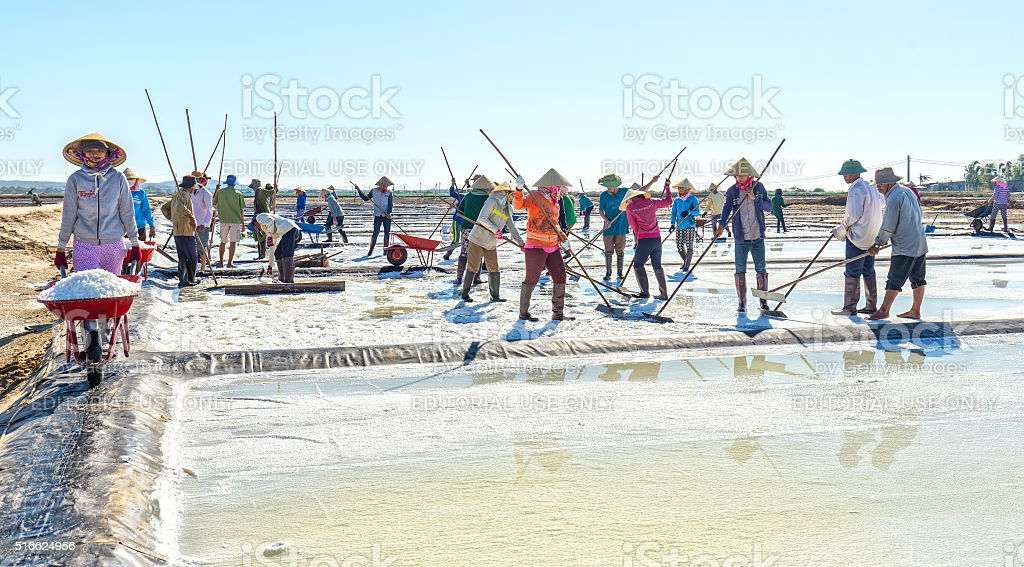 Fishermen harvest salt stock photo