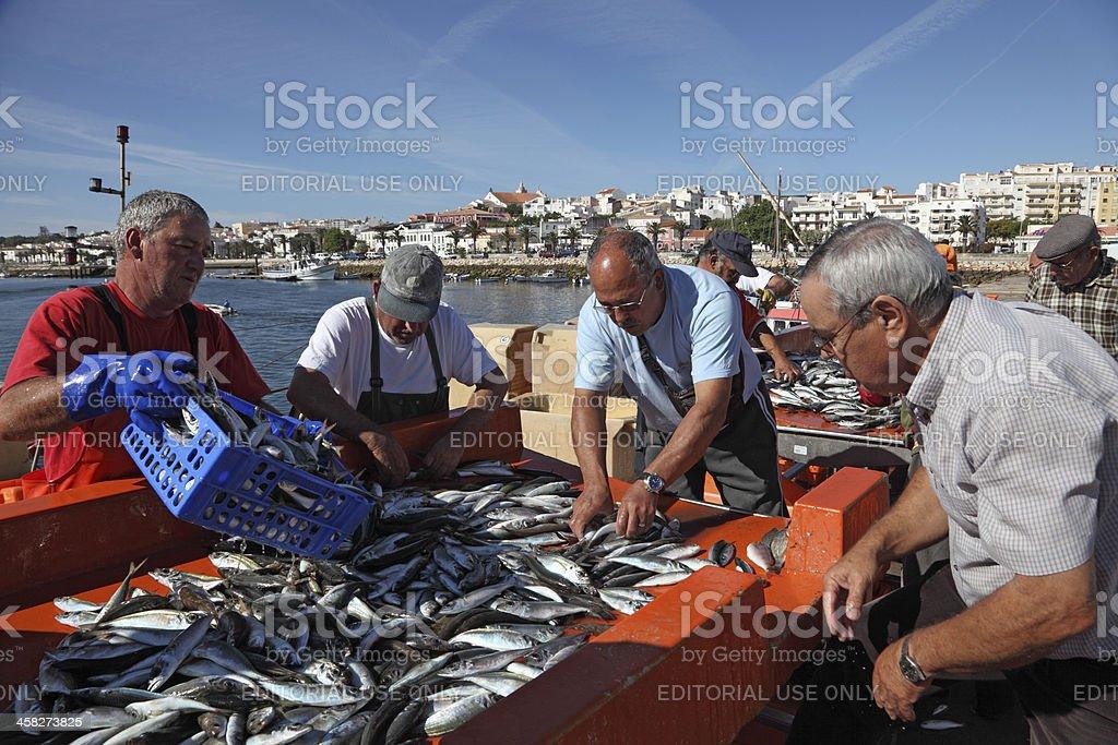 Fishermen in Lagos, Portugal royalty-free stock photo