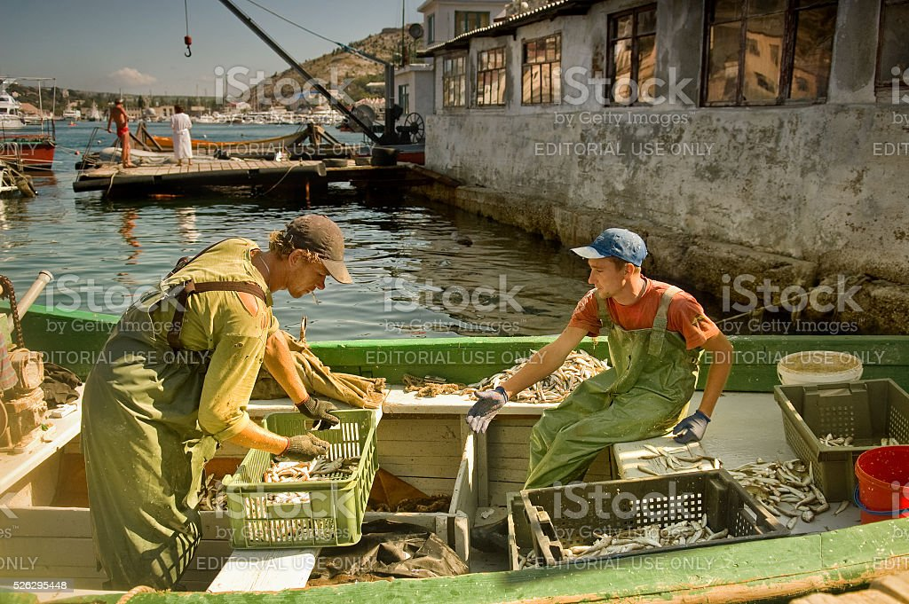 Fishermen sort the catch on boat stock photo