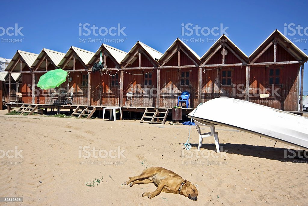 Fishermen's huts on the beach in Portugal royalty-free stock photo