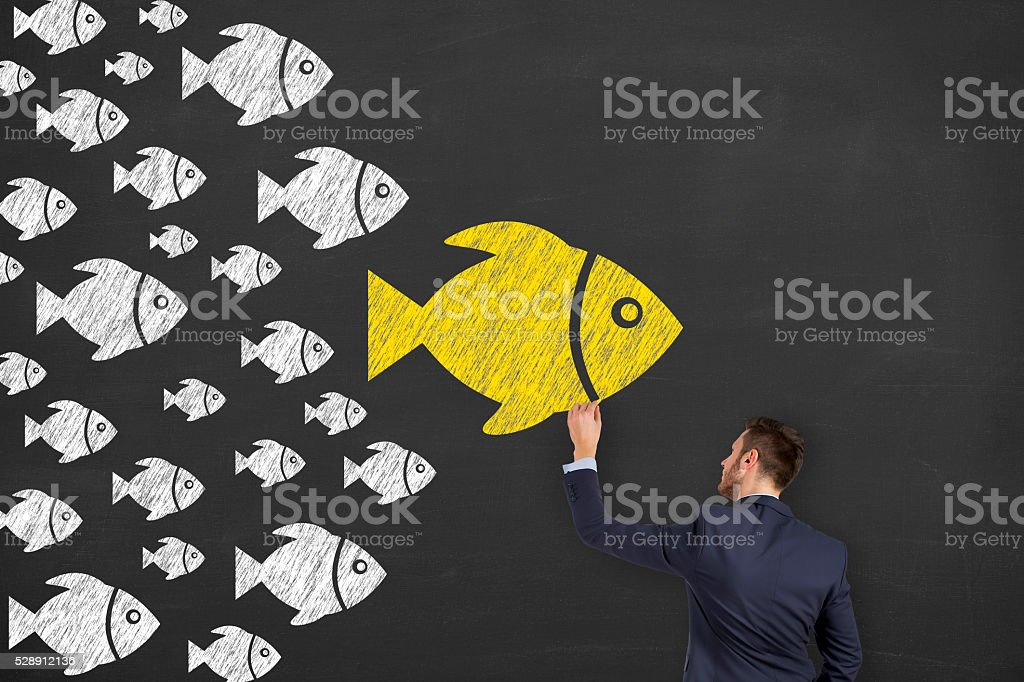 Fishes Leadership Concept on Chalkboard stock photo
