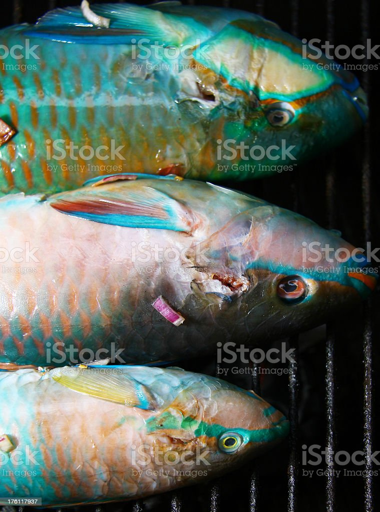 Fishes on the grill royalty-free stock photo