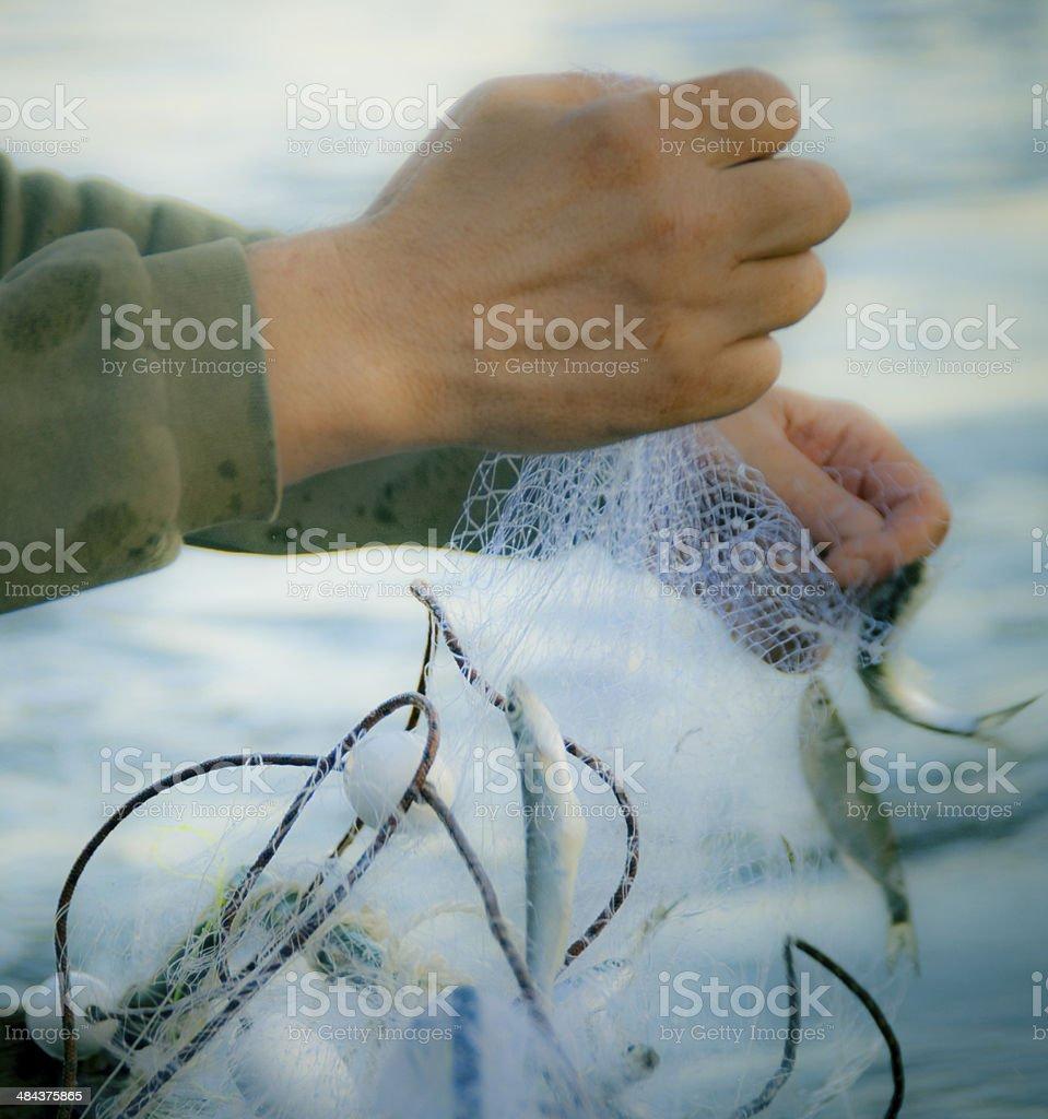 Fishing and fisherman hands stock photo