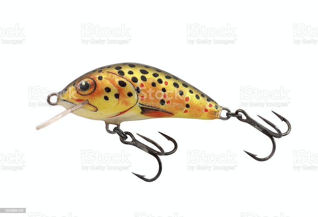 fishing bait royalty-free stock photo