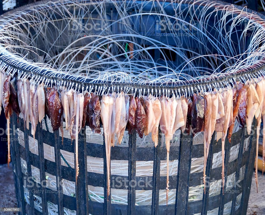 Fishing bait with squid stock photo