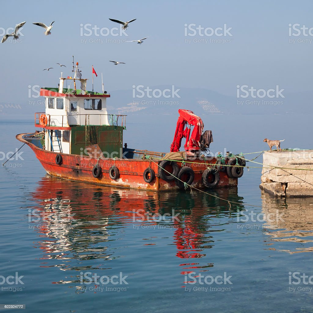 Fishing Boat and dog stock photo