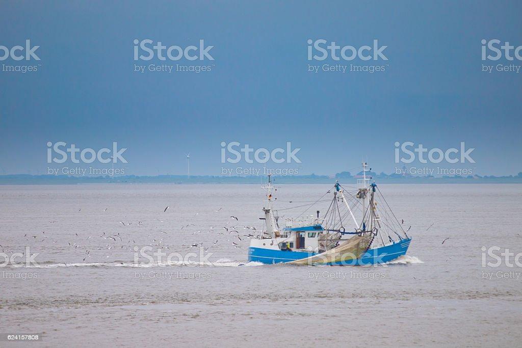 Fishing boat catching fish stock photo