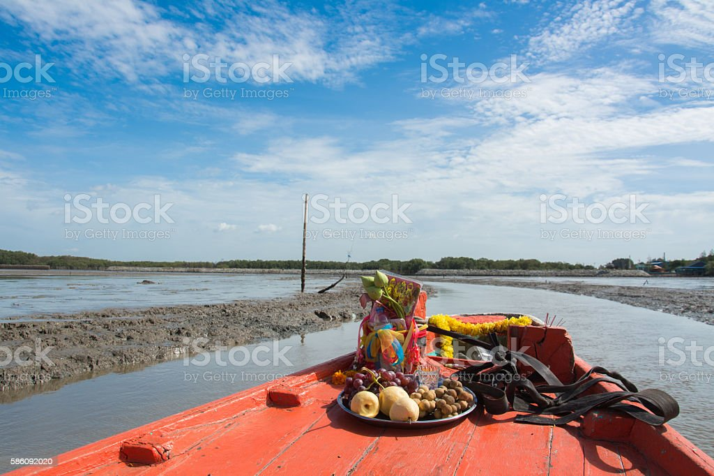 Fishing boat through mangrove stock photo