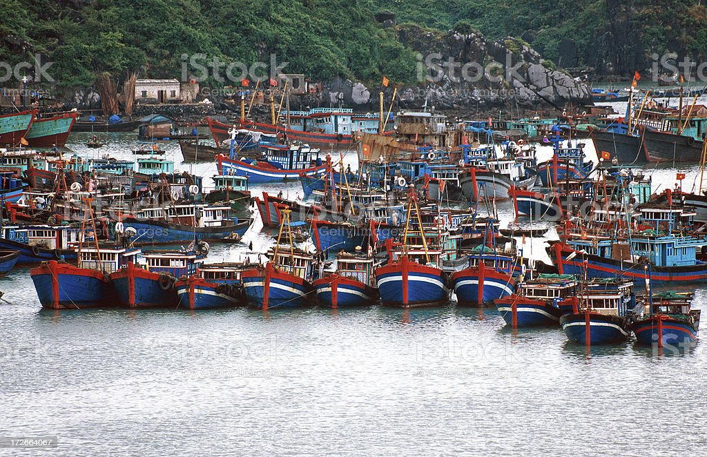 Fishing boats at Cat Ba harbor stock photo
