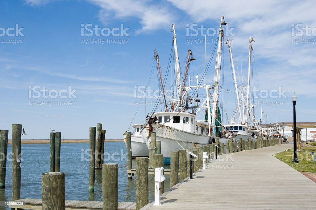 Fishing Boats at the Dock Under Sunny Skies royalty-free stock photo
