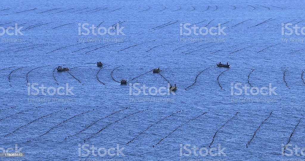 Fishing boats at the east coast of DPRK royalty-free stock photo