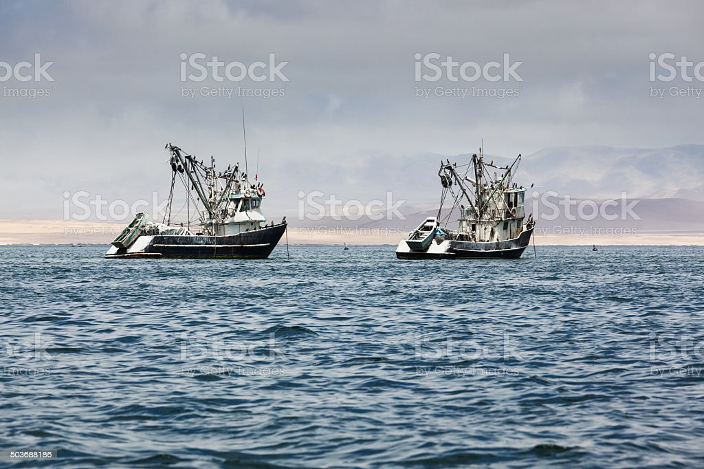 fishing boats in the bay stock photo