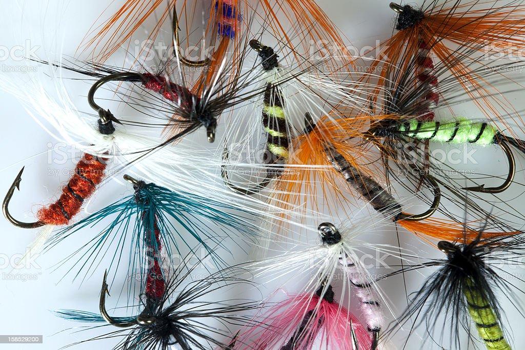 Fishing flies stock photo