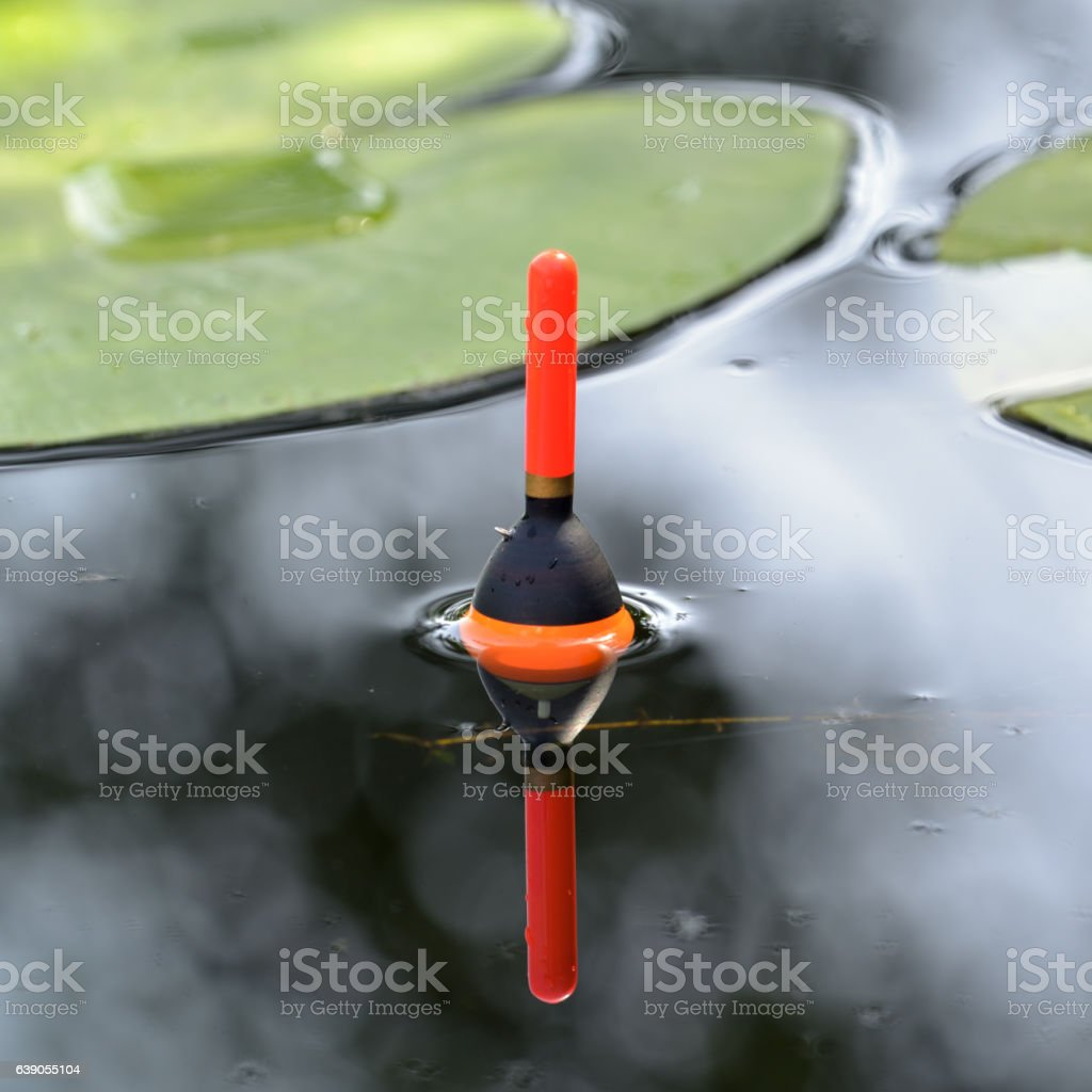 Fishing float in the pond stock photo