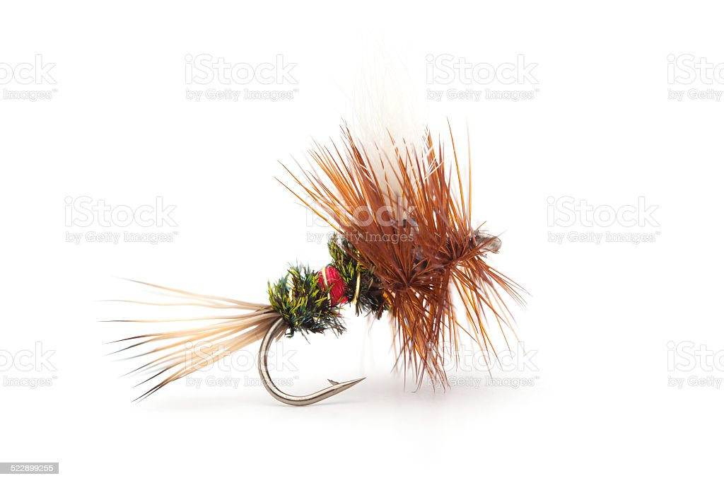 Fishing Fly Isolated on a White Background stock photo