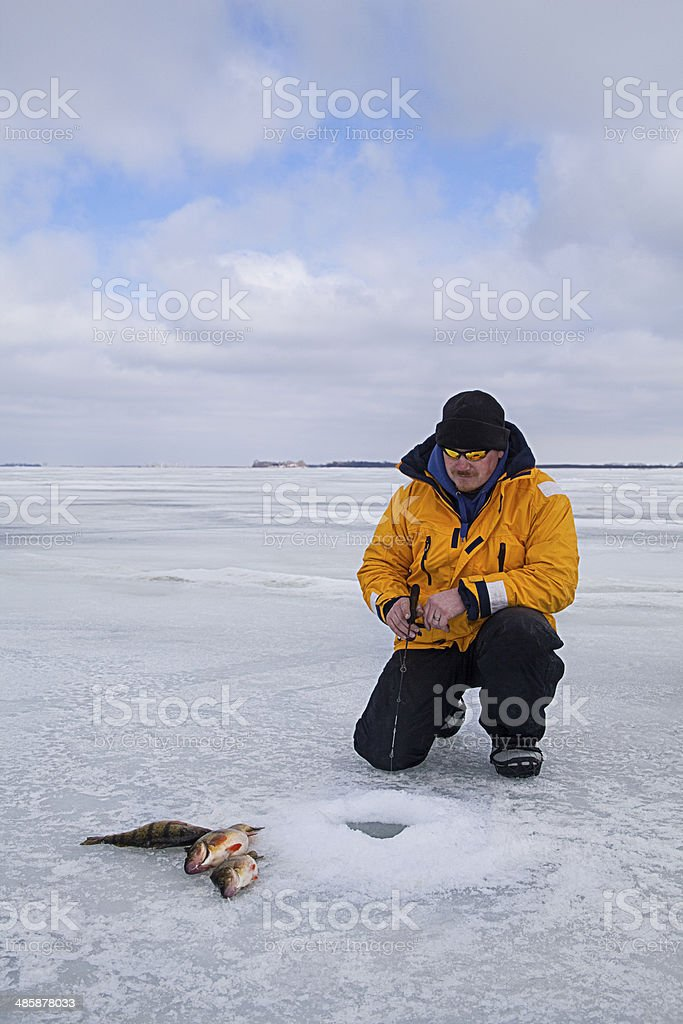 Fishing For Perch royalty-free stock photo