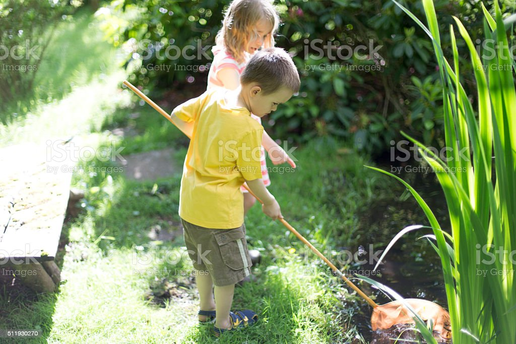 Fishing for pond life stock photo